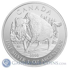 2013 1 oz Silver Canadian Wood Bison From The Wildlife Series. http://www.gainesvillecoins.com/buy-silver.aspx