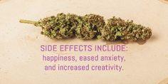 Now those are side effects you can look forward too. #Cannabis #BuyMedicalMarijuanaOnline #CureAsthma #MedicalMarijuana #WeedDeliveryService