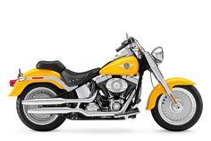 Harley Davidson Motorcycles Photo - Bing Images
