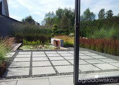 Moja codzienność - ogród Oli - strona 1552 - Forum ogrodnicze - Ogrodowisko