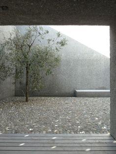 a f a s i a: wespi de meuron romeo architetti