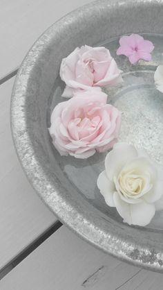 Pastel | Pastello | 淡色の | пастельный | Color | Texture | Pattern | Composition | Zinc