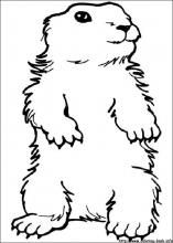 10 Best Groundhog Day Coloring Page Images Printable Coloring