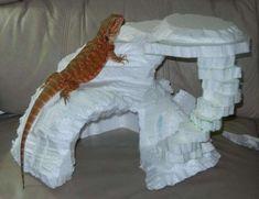19 The Amazing Dragon Gecko - meowlogy Bearded Dragon Habitat, Bearded Dragon Cage, Paludarium, Vivarium, Bartagamen Terrarium, Lizard Terrarium, Terrarium Centerpiece, Bearded Dragon Enclosure, Bearded Dragon Terrarium