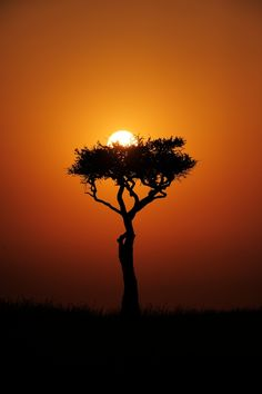 Mara sunrise, a nest for the Sun. by Russ Valentine, via 500px