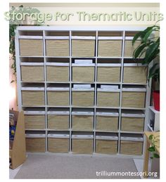 Storage for thematic units.  If you have the space and a little budget, this is super to keep all your books, manipulatives and anything else you need for a theme study all in one place to return to time and again.