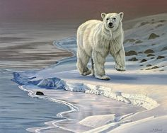 Polar Bear Wall Art - Painting - Polar Bear On Icy Shore by Paul Krapf Animal Paintings, Paintings For Sale, Animal Drawings, Canvas Art, Canvas Prints, Art Prints, Art Institute Of Pittsburgh, Ohio, Thing 1