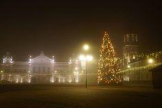 fot. Ireneusz Baran #christmasstree #lights