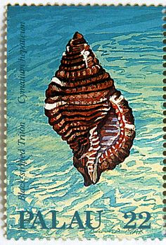 Palau.  SEASHELLS TYPE OF 1986.  BLACK STRIPED TRITON.  Scott 150 A20 Issued  1987 Aug 25, Lithogravured, Perf. 14. 22.