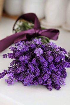 ♡♡ Fabulous! ♡♡, chasingrainbowsforever: Lavender Bouquet ♥