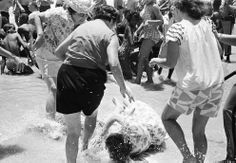 A woman falls to the beach after she was attacked by three white women segregationists, when she attempted a wade-in with several African American and white desegregationist demonstrators at St. Augustine Beach, Florida, on June 23, 1964. (AP Photo/JK)