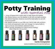 Image result for how to use doterra digestzen essential oil