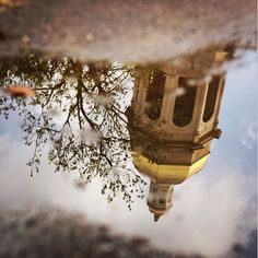 Rainy days make for some beautiful Baylor reflections!