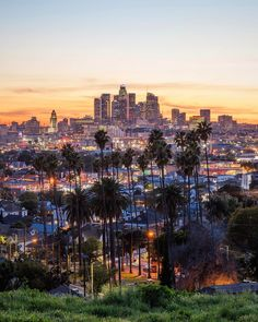 From LA Movement on Instagram: What a gorgeous Los Angeles view!