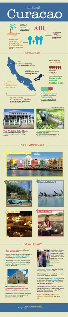 All About Curacao Infographic - Curacao Vacation Blog #caribbean #travel #island