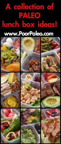 A collection of adult Paleo Lunch Box Ideas!