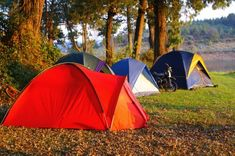 Camping Australia - Find out from a local all the best places to camp, the top camping spots throughout Australia and the best campsites suitable for motor homes, caravans or tents.