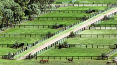 View topic - Fallin and risin Equestrian Stables, Horse Stables, Horse Farms, Horse Farm Layout, Barn Layout, Horse Paddock, Horse Arena, Rinder Stall, Casas Country