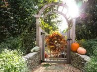 Find out from HGTV Gardens how to add fall color to your garden.