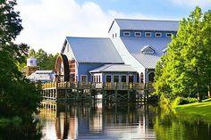 Good morning! From Port Orleans Riverside   Love this resort!    #disney #disneyworld #disneyparks #riverside #riversideresort #frenchquarter #disneyhotels #princessandthefrog #princesstiana by disneyenthusiastic