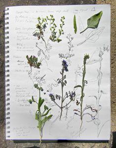 Hmmm....I'm sure botanical doodles would be lovely on kraft paper and a favor.