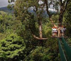 Costa Rica Canopy Manuel Antonio National Park