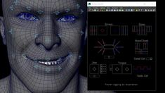 The facial rig used skin cluster node working with blendshapes node.
