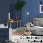 Using Dulux Flamingo Fun 1 - Living Room Paint Color Chart, Paint Colors, Wall Colours, 2 Colours, Living Room Paint, Living Room Grey, Dulux Paint, Teal Walls, Accent Walls