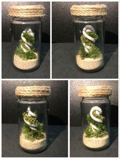 Small Terrarium, Terrariums, Feminine Symbols, Biscuit, Spiral, Minimal, Gardening, Kit, Table Decorations