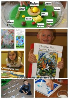 Christian Kids Explore Biology by Bright Ideas Press - a fun, hands on, science curriculum for the whole family