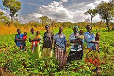 This photo looks like an album cover. Morobo, South Sudan. Photo credit: Erol Yayboke/ CHF International