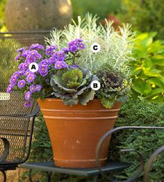 In Good Taste: IGT (In Good Taste) Fall Container Gardens