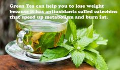 #Health Tips for #Weight #Loss  #Green #Tea can help you to lose weight because it has antioxidants called catechins that speed up #metabolism and burn #fat.