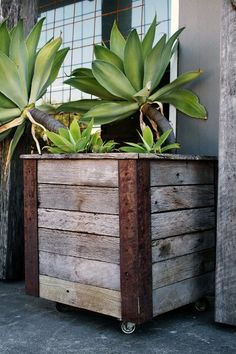 Beautiful antique / industrial reclaimed wood planter on casters. You could easily replace the metal with wood stained to a different color for accent effect.