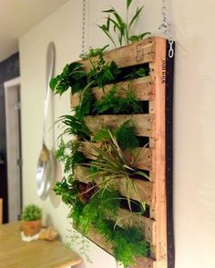 Shake My Blog | Un jardin vertical avec une palette