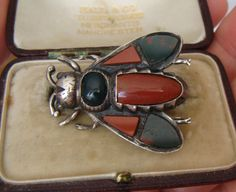 Antique Scottish Silver & Agate Insect/ Bug/Fly Brooch