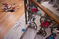 selvatico.rassegna di campagna 4 / museo civico san rocco fusignano / chiara pergola