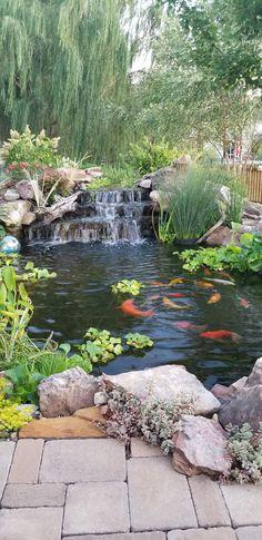 Japanese Water Gardens, Small Water Gardens, Fish Pond Gardens, Small Water Features, Water Features In The Garden, Backyard Water Feature, Ponds Backyard, Garden Pond Design, Natural Swimming Ponds