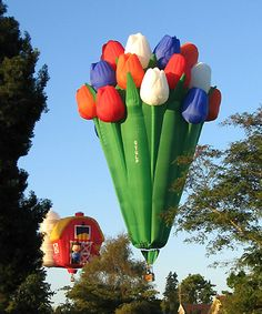 Another form balloon art... BIG