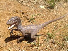 Schleich Velociraptor 1