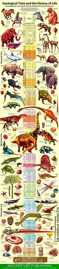 Geological Time and the History of Life - Never before has the latest geological information been so beautifully presented … an excellent way to get everybody excited about geology and paleontology!