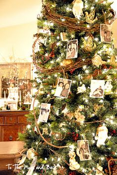 Christmas tree with black and white photos and grapevine