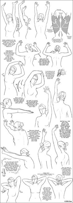 Arms Above the Shoulder/Head Tutorial by ~DerSketchie on deviantART ✤…
