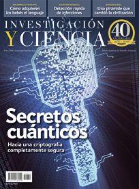 Cromosomas sexuales. La región pseudoautosómica | Investigación y Ciencia | Investigación y Ciencia