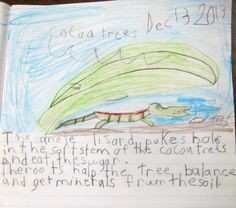 An enthusiastic young author-illustrator at Admiral Seymour in Vancouver, British Columbia, is inspired by a scene from No Monkeys, No Chocolate.