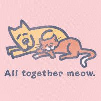 All Together Meow. #Lifeisgood #Optimism #Cat Mom bought me this one in honor of Chloe & Mimi <3