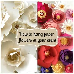 paper flower how to  Collage