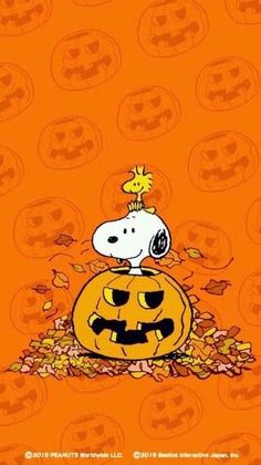 Snoopy in a Jack-O-Lantern🎃on Halloween. Snoopy Halloween, Charlie Brown Halloween, Charlie Brown And Snoopy, Halloween Art, Happy Halloween, Halloween Cartoons, Snoopy Christmas, Funny Christmas, Christmas Art