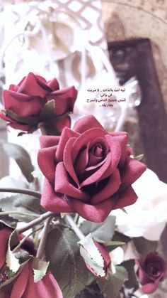 Beautiful Poetry, Beautiful Arabic Words, Arabic Love Quotes, Beautiful Flowers, Sweet Words, Love Words, Me Quotes, Qoutes, Rustic Letters