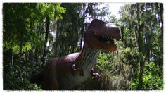 My Weekend in Pictures - Dinosaurs and Antiques